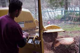 One person is all it takes to grind your stump down 36 inches below the surface