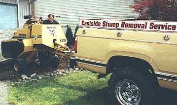 Stump grinding services offered in North Bend, Snoqualmie, Issaquah, Sammamish, Fall City, Preston, Carnation, Kirkland and Bellevue